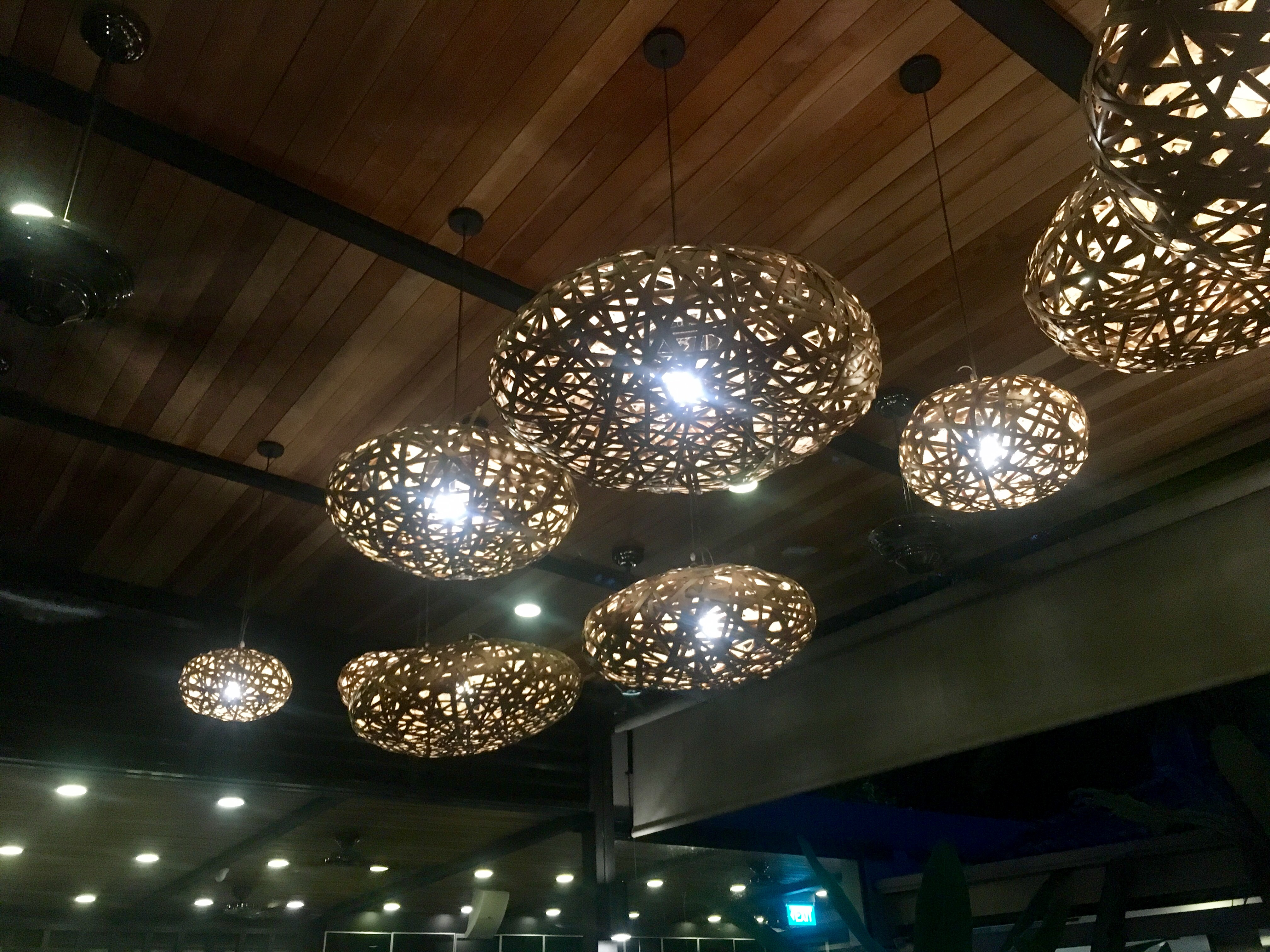 The_Halia_Ceiling_Lights